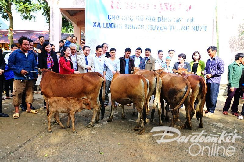 Đại biểu các tổ chức tặng bò cho 10 hộ nghèo xã Lương Thông, huyện Thông Nông, tỉnh Cao Bằng. (Ảnh của Trần Ngọc Kha).