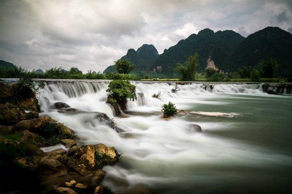 Bò Hảy là một con thác đẹp được tạo bởi dòng Quây Sơn.
