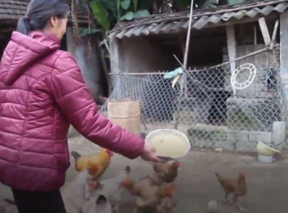 Ở nông thôn thì chăm con gà con heo, làm rau ở vườn để Tết các cháu về nó ăn