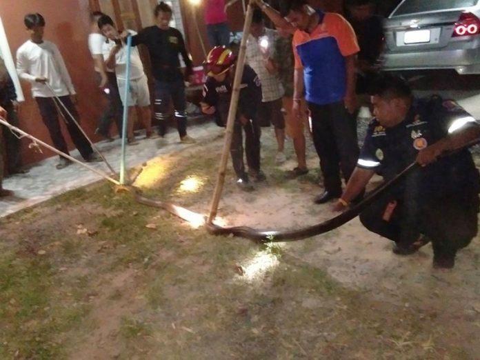 Dân làng và cứu hộ vây bắt được con rắn khủng