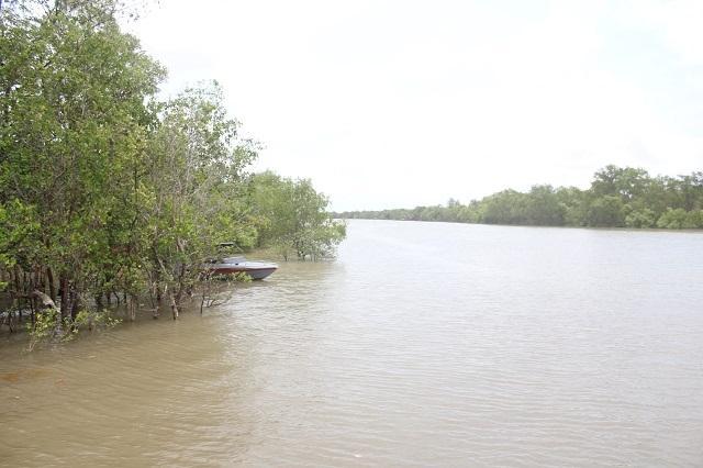 Sông Cổ Chiên nơi Thiếu úy Hiếu mất tích trong lúc làm nhiệm vụ.