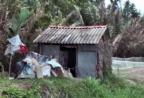 Căn nhà của Trường, nơi bị can gây án.