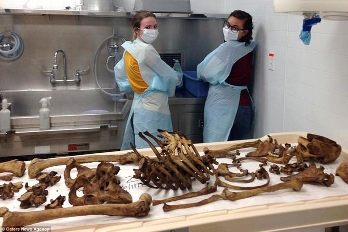 Thực tế, thành tựu của ngành pháp y đều tới từ nghiên cứu tử thi người.