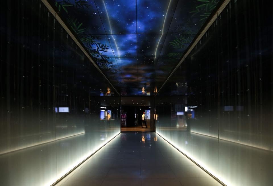 """""""Con đường tre""""- lối vào huyền ảo dẫn lên Đài quan sát Lotte để khám phá và trải nghiệm những điều mới mẻ, thú vị."""