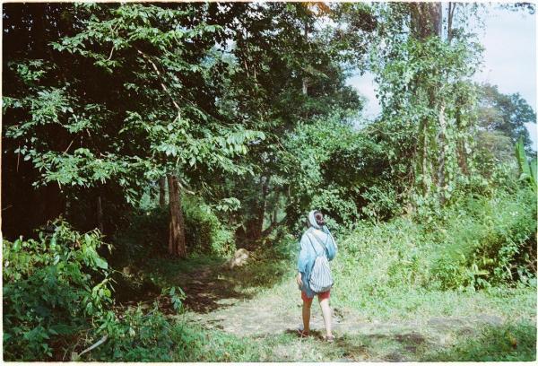 Những cánh rừng còn nguyên nét hoang sơ. (Nguồn: Kichan)