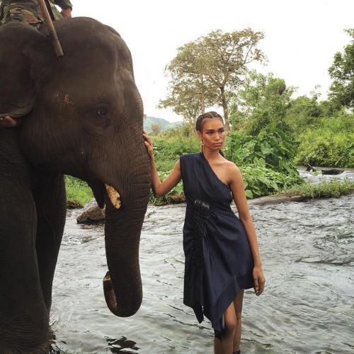 Du khách check - in cùng những chú voi nơi núi rừng. (Nguồn: Ruan Dang)