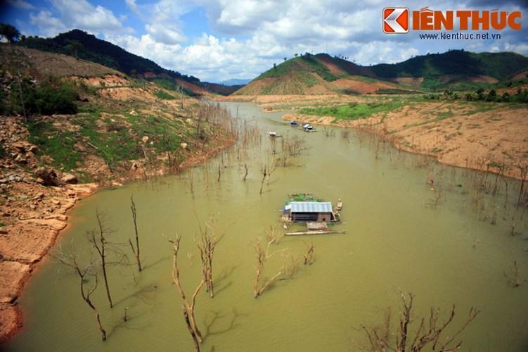 Trước khi xây nhà máy thủy điện, nhiều khu vực trong lòng hồ vẫn là những cánh rừng rậm rạp.