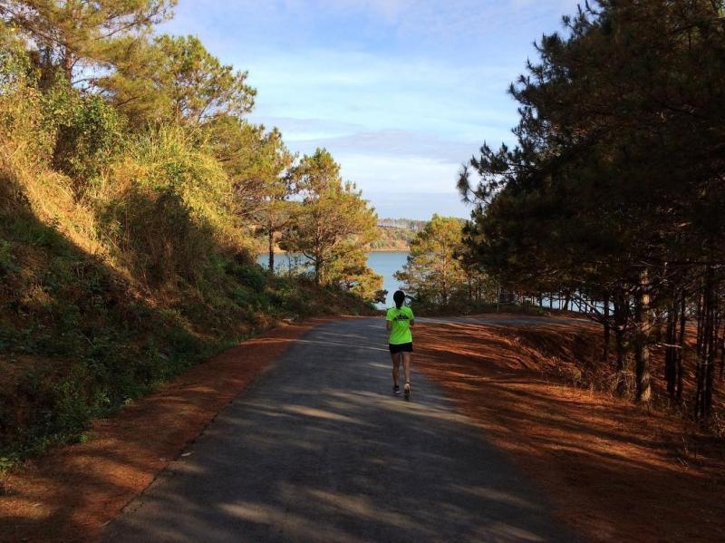 Con đường dẫn xuống hồ đẹp như tranh vẽ, hai bên là những rặng thông xanh ngắt. Ảnh: Aprilnguyenvn