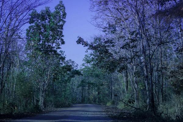 Theo tiết lộ của đạo diễn Trần Huy Cường, bộ phim Mật danh Rocker có đến hơn 50% bối cảnh quay tại vườn quốc gia Yok Don với nhiều khung hình đẹp. Với sự đầu tư nghiêm túc, từng phân đoạn trong phim được chăm chút kỹ lưỡng nhằm thỏa mãn thị hiếu của khán giả màn ảnh nhỏ.