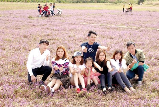Cánh đồng hoa tím thu hút nhiều bạn trẻ tìm đến.