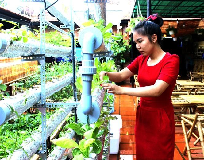 Chị Hoan bên giàn rau trồng theo mô hình thủy canh