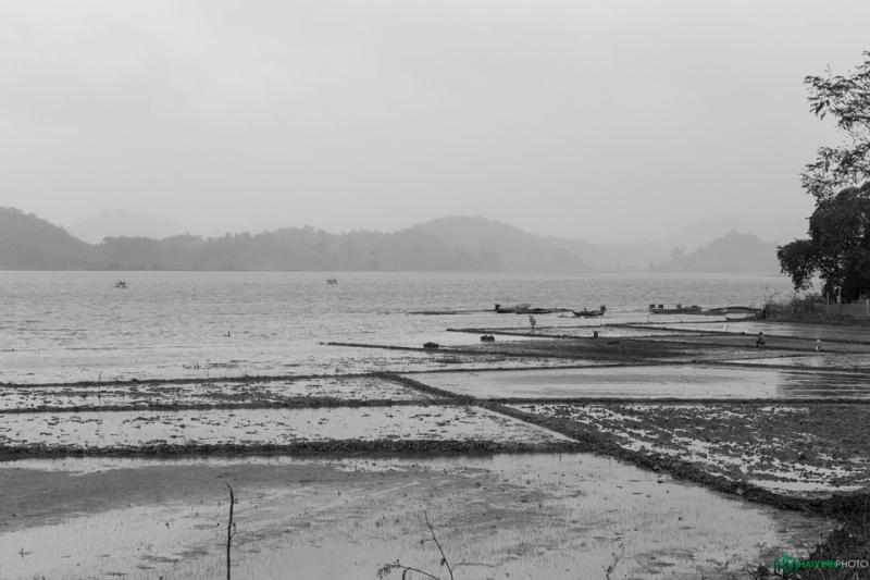 Một bãi bồi của hồ Lak được người dân bản địa tận dụng làm ruộng trồng lúa. Người dân ở đây cho biết hồ Lak không sâu lắm, thoải dần ra phía giữa hồ. Độ sâu nhất của hồ chỉ tầm từ 5-7 m.