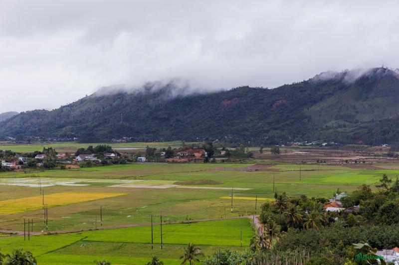 Chúng tôi đi vào một ngày mưa tầm tã, nhưng không vì thế mà cảnh vật hai bên đường bớt đẹp. Những ngọn núi mây mù bao phủ, phía dưới được bao phủ bởi màu xanh mát mắt của lúa non.