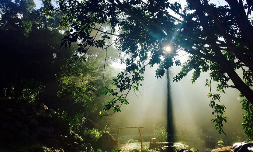 Không gian mờ ảo như đang đưa bạn về cõi bồng lai, tiên cảnh là cảm nhận của những du khách đã từng đặt chân đến Hoa Sơn Điền Trang - Khu du lịch mới toanh tại Đà Lạt đang được giới trẻ săn tìm.