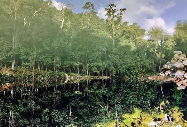 Hoa Sơn Điền Trang không chỉ cho bạn tham quan, chụp hình mà còn có thể lưu trú qua đêm với những căn nhà gỗ đầy màu sắc giữa rừng, hoặc cắm trại ở khoảng sân rộng giữa bãi cỏ muôn trùng hay thưởng thức những món ăn đặc trưng của núi rừng tại khu nhà hàng độc đáo