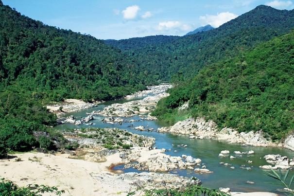 Dòng suối trong vườn quốc gia Chư Yang Sin (ẢNH Sưu tầm)