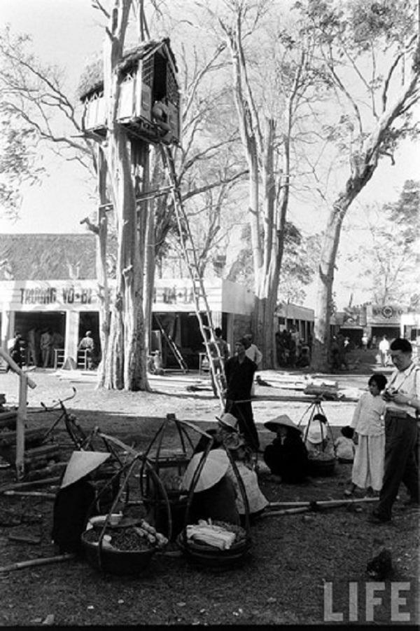 Một góc hội chợ với ngôi nhà được dựng trên cây. Ảnh: Life.
