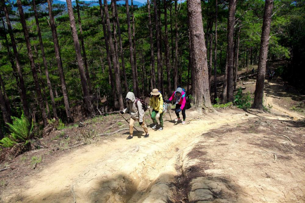 Để đến điểm đích Phan Dũng, du khách phải chinh phục khoảng 15 ngọn đồi hình bát úp có độ dốc 40 - 60 độ, độ cao trung bình 600 m - 800 m so với mặt nước biển