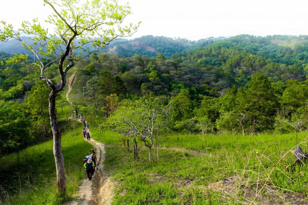 Hành trình ngày tiếp theo bắt đầu bằng con đường mòn dẫn lên ngọn đồi cao với lác đác vài cây thông làm cho bức tranh phong cảnh thiên nhiên hoang sơ thêm kỳ vĩ, thơ mộng