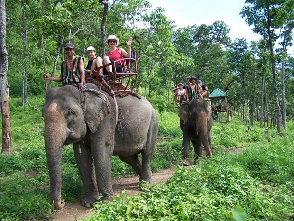 Đến Buôn Đôn trải nghiệm cảm giác tự mình cưỡi lên những chú voi và dạo chơi trong rừng.