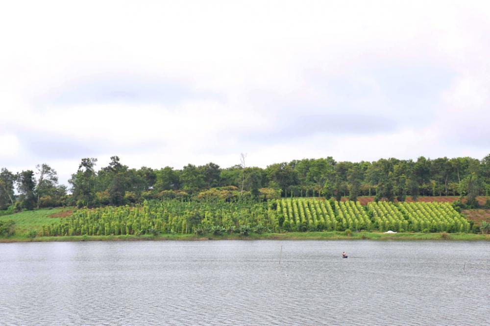 Hồ Tây ở Đắk Mil.