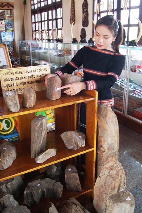 Loại đá đặc biệt này được trưng bày ở nhiều địa điểm du lịch, văn hóa để du khách có cơ hội chiêm ngưỡng và mua về làm đồ kỷ niệm. Gỗ hóa thạch có giá từ vài trăm nghìn đến hàng chục triệu đồng.