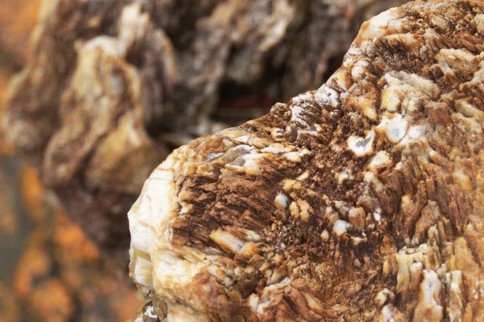 Nhiều người còn quan niệm gỗ hóa thạch mang đến may mắn bình an, sức khỏe và trường thọ cho người sử dụng.