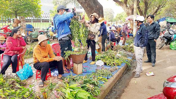 Nhộn nhịp cảnh mua bán lan rừng tại ngã ba đường Phan Đình Giót - Lê Duẩn (TP. Buôn Ma Thuột).