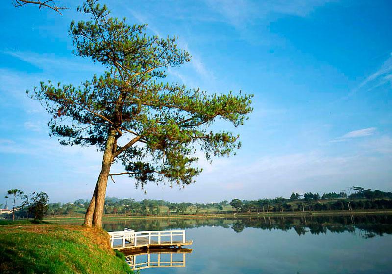Hồ Xuân Hương là hồ nhân tạo, có chu vi chừng 5 km, rộng 25ha, có hình trăng lưỡi liềm kéo dài hơn 2 km đi qua nhiều địa danh du lịch của thành phố Đà Lạt như: Vườn hoa thành phố, Công viên Yersin, Đồi Cù. Ảnh: Thuyngakhanhhoa.