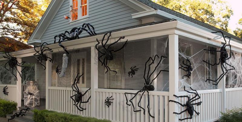 Nhện: Tương tự, nhện cũng có liên quan đến các phù thủy theo quan niệm từ thời trung cổ. Nhiều người tin rằng nếu một con nhện rơi vào ngọn nến đang cháy, nghĩa là gần đó có phù thủy. Đồng thời, nếu bạn thấy chúng vào lễ Halloween, linh hồn một người thân đang bảo vệ bạn. Ảnh: Party City.