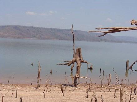 Kỳ thú hồ Ayun Hạ_Ảnh: L.Đ.Dũng