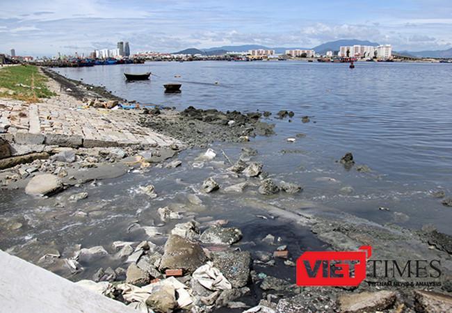 UBND TP giao Sở NN&PTNT khẩn trương hoàn thành việc khảo sát khối lượng bùn cần nạo vét tại Âu thuyền Thọ Quang và các hồ sơ, thủ tục theo quy định để sớm triển khai nạo vét