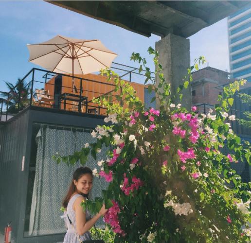 Khu homestay còn được trang trí bằng giàn hoa giấy lung linh. (Nguồn: @uynphhhh)