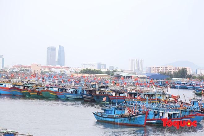 Tàu thuyền của ngư dân miền Trung vào Âu thuyền Thọ Quang (Đà Nẵng) tránh trú mưa bão. Ảnh: Đức Hoàng