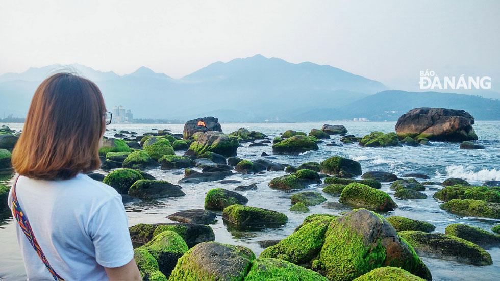 Các bạn trẻ thích thú với những tảng đá phủ đầy rêu thơ mộng