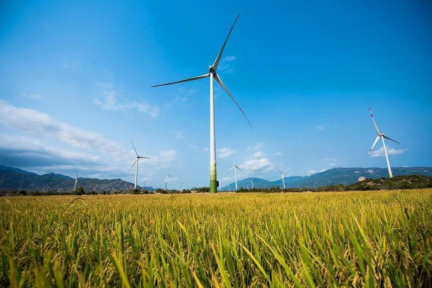 Tỉnh Ninh Thuận hiện có 34 dự án điện mặt trời, 13 dự án điện gió.