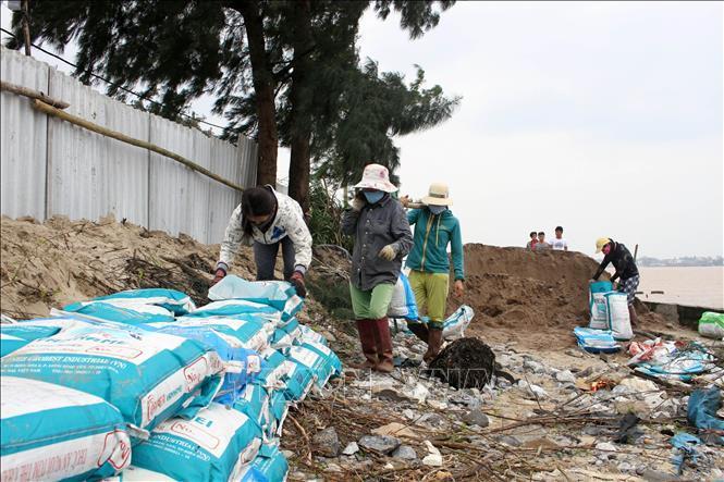 Người dân huyện huyện Gio Linh gia cố bờ bao nuôi trồng thủy sản phòng chống bão số 13. Ảnh: Hồ Cầu/TTXVN