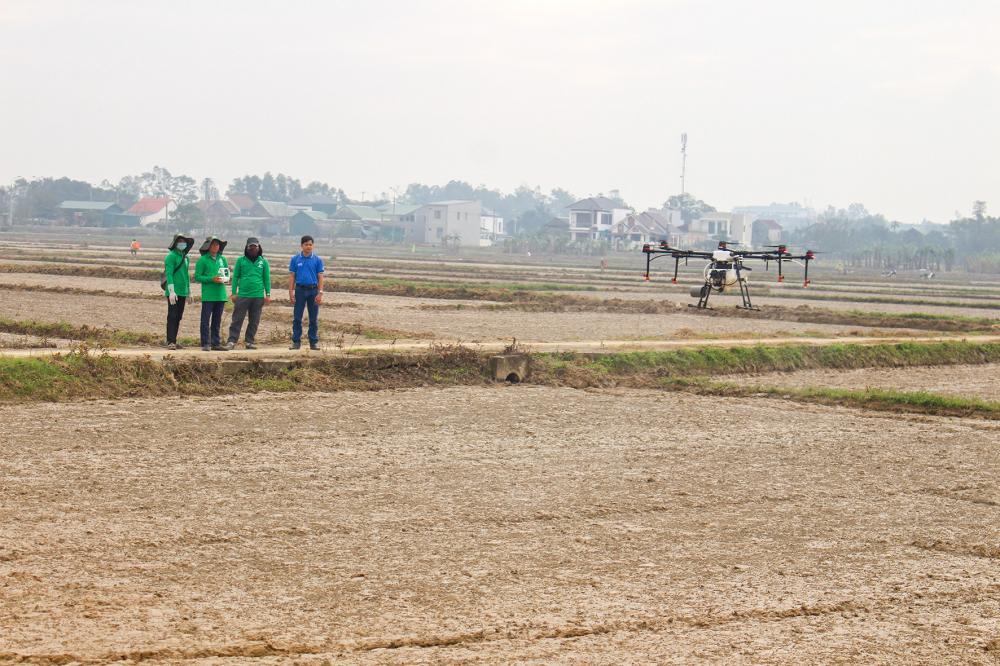 Các kỹ sư điều khiển drone phun thuốc diệt cỏ trên cánh đồng phường Đông Thanh, thành phố Đông Hà -Ảnh: P.V.T