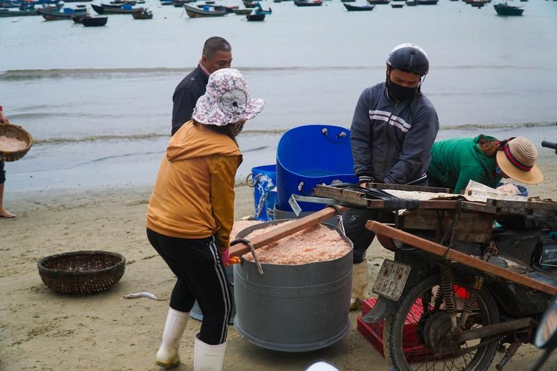 Ruốc được thương lái và các chủ nhà hàng thu mua ngay tại bãi biển.