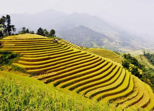 Nguồn: travel.com.vn