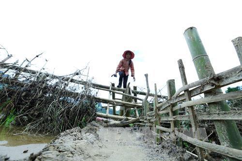 Em Lò Thị Thao (12 tuổi) hàng ngày vẫn phải đi qua con suối bằng bè mảng để giúp bố mẹ chăn gia súc.