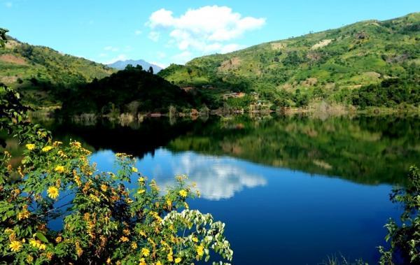 Khung cảnh sông núi hữu tình càng thêm sinh động bởi sắc vàng của hoa.