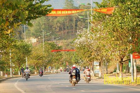 """Vẻ đẹp trong trắng, thuần khiết của Hoa Ban đã trở thành biểu tượng của Điện Biên. """"Thành phố Điện Biên Phủ - Thành phố Hoa Ban."""