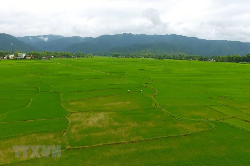 Công trình cung cấp nước tưới cho toàn bộ diện tích nên cánh đồng Mường Thanh-Điên Biên. (Ảnh: Xuân Tiến/TTXVN)