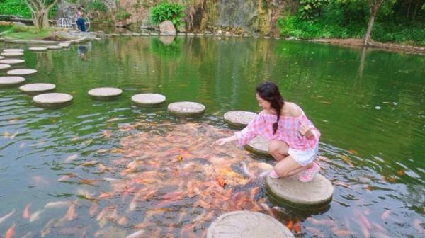 Bạn có thể ngắm nhìn đàn cá đang tung tăng bơi lội nơi hồ Long Ẩn (Nguồn: Instargram trang.88)
