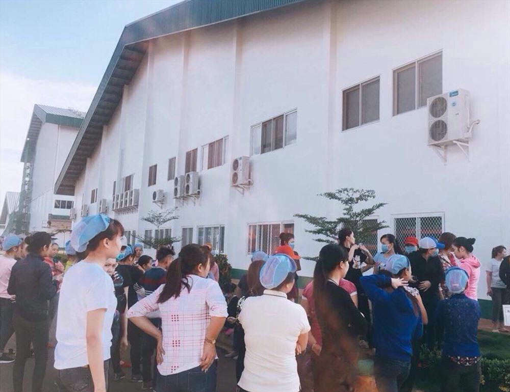 CN Pou Phong ngừng việc tập thể_Ảnh: CTV