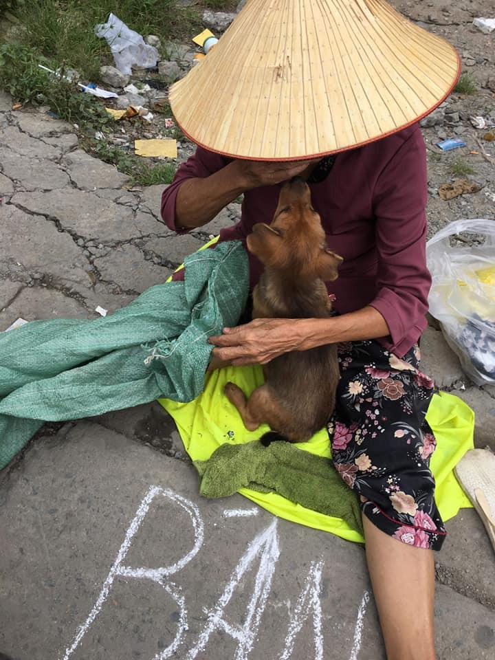 Cụ bà khóc khi phải xa chú chó nhỏ
