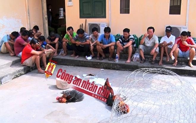 Tang vật thu giữ tại điểm đá gà an tiền trên địa bàn huyện Phú Tân (An Giang).