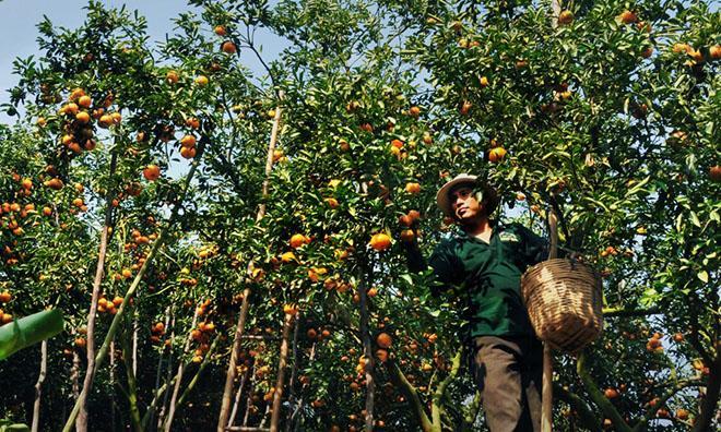 Ảnh:Huỳnh Mỹ Thuận