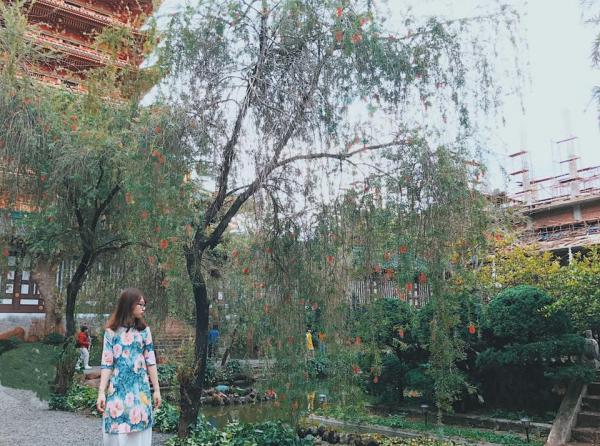 Những cây liễu rủ bóng trên mặt hồ. (Nguồn: FB Nguyễn Vũ Ngọc Minh)